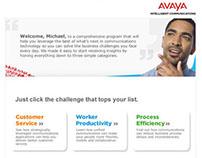 Avaya CRM Program