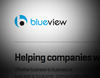 BlueView agency website