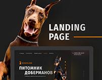 Doberland Landing page