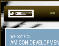Amicon Group Branding | Web Development
