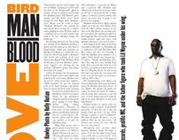 Birdman: Blood Love - The Stool Pigeon