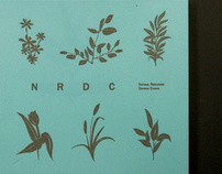 NRDC Project