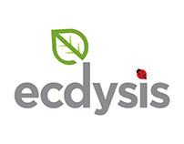 Ecdysis Branding and Website