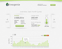 Energy Company Customer Dashboard