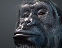 Zbrush Gorilla by TITI