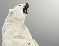 Zbrush Polar Bear by TITI