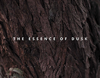 The Essence of Dusk