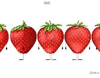 Fraise / Strawberry