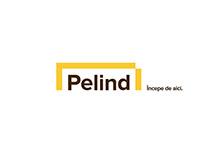 Pelind |Rebranding the DIY network