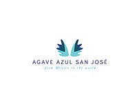 Agave Azul San José