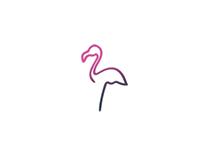 Pink Flamingo | Brand Identity