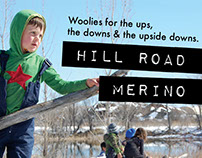 Hill Road Merino
