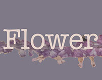 A flower a day concept