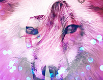 Spirithoods Photo Illustrations