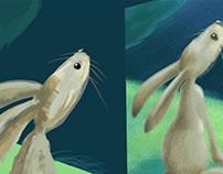 VR Making the rabbit