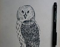 Sketch pack `09-11