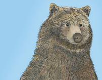 Gnar Bear Illustration