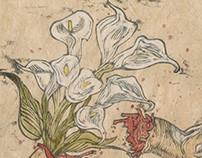 Deer Lilies