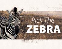 Diskomp Zebra Flyer