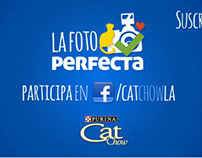 "Catchow's ""La foto perfecta"""