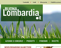 WEB design Graphic Concept - Buonalombardia.it 2008