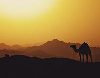 Treasures of Sinai   Travel Photography Series