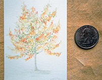 Miniature Clothed Trees