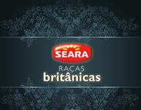 Seara - Estudo