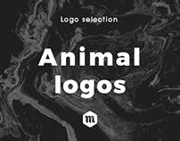 Animal Branding