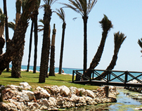 Oasis | beach lounge bar