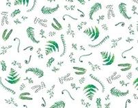 Watercolour Fern Patterns