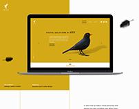 Rigodesign Portfolio site