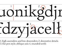 Typeclinic, 13th International Type Design Workshop '16