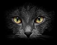 Rivet One's Eyes