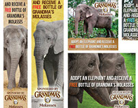 Adopt an Elephant Campaign