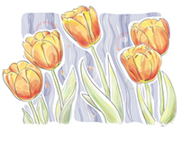 Tulips. Spring's Mood.