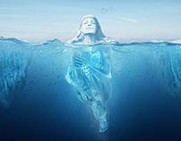 Polarkrill Branding Campaign