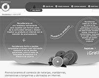 WEB DESIGN AND PROGRAMMING :: MercaNaranja