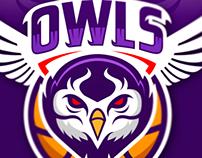 Owls Basketball