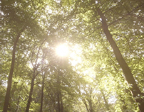 Forest Holidays Promo Video