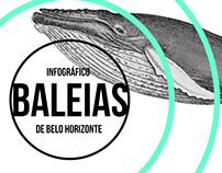 BALEIAS - Infográfico