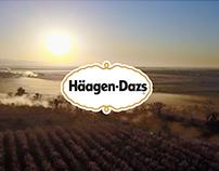 Haagen-Dazs: Honey Bee Project