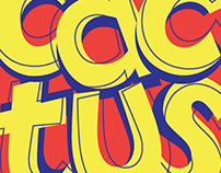 Pochette Vinyle Typographique/ Typographic vinyl sleeve