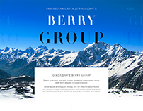 Berry Group - разработка сайта для холдинга