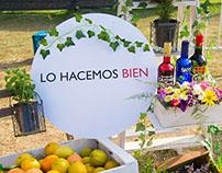 LHB - Festival Bocas Abiertas