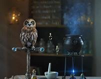 Back to Hogwarts - Cinemagraphs