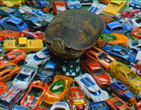 TurtleRewind