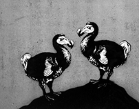 DODO EXPANSION_ Street Art's project
