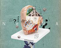 COMPLEJO N°2 (Digital Collage 2017)