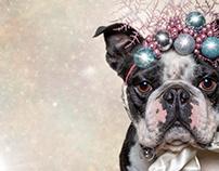 A Very Frog Dog Christmas - 2019
